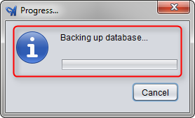 Backup In Progress